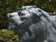 Der Hackher-Löwe auf dem Grazer Schlossberg. (Foto: Sudy)