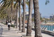 Palma de Mallorca. © 2015 Reinhard A. Sudy