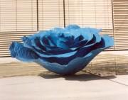 Blaue Blechrose am Vorplatz. (Foto: Sudy)