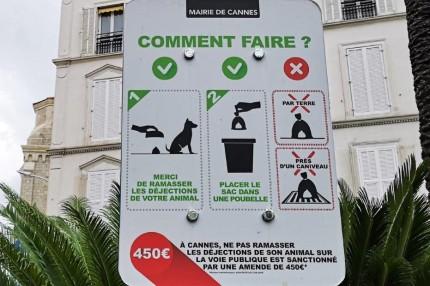 Spielregeln in Cannes. © 2019 Reinhard A. Sudy